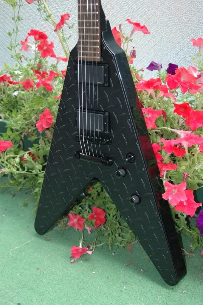 Tus 5 Guitarras favoritas Randomcatsandguitars002