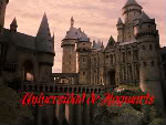 Ashley Levine Hogwarts2-1