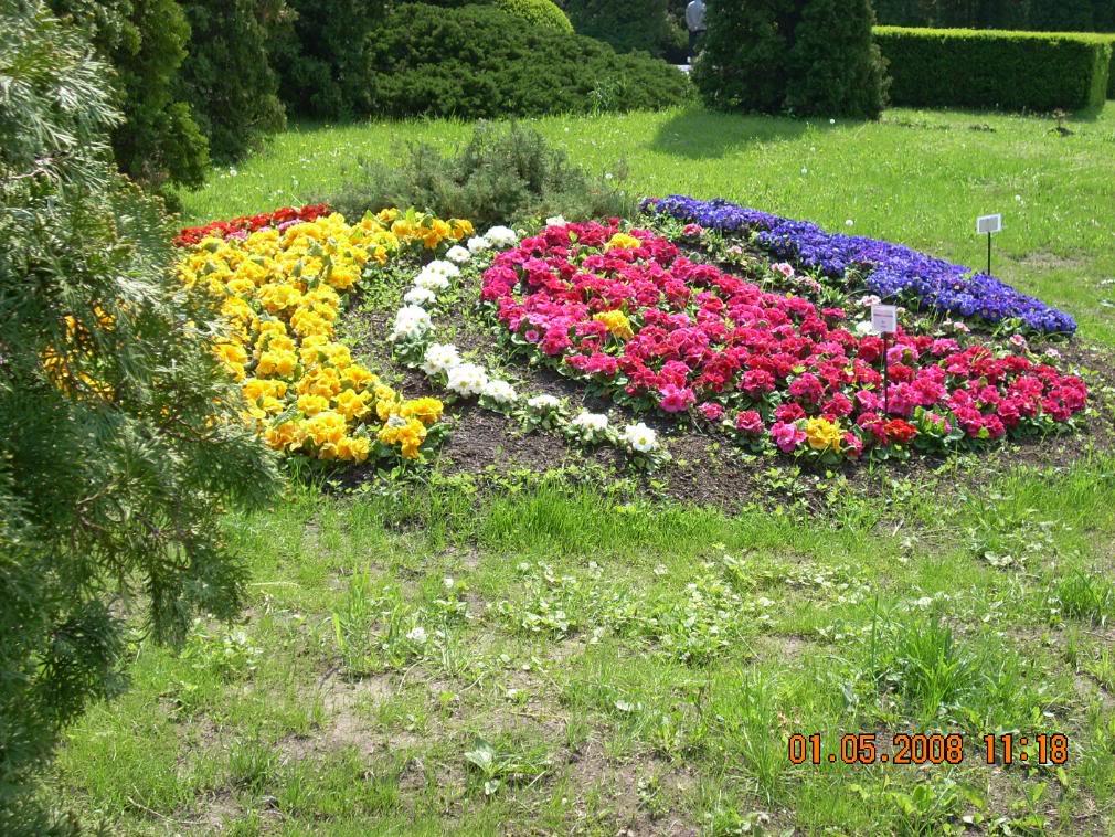 Gradina Botanica din Iasi DSCN2346