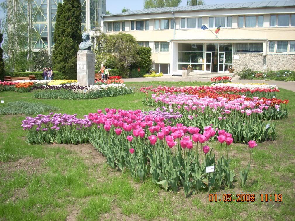 Gradina Botanica din Iasi DSCN2348
