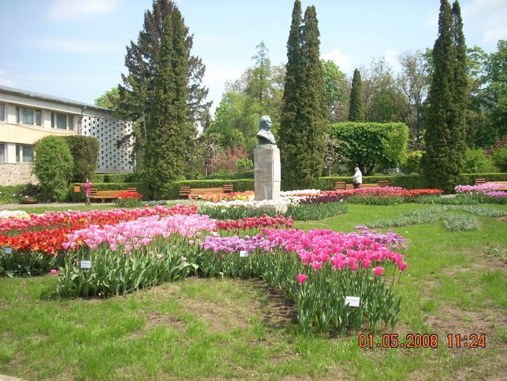 Gradina Botanica din Iasi DSCN2359