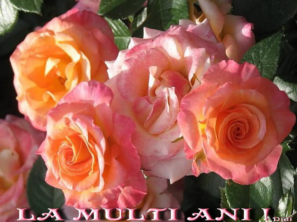 Lelia Mossora-  Al gurii nerost Lamultiani