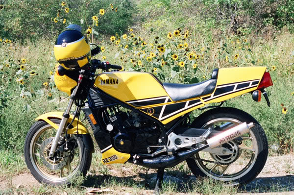 Kenny Roberts Special RZ350 MRZ-350AmongSunflowers