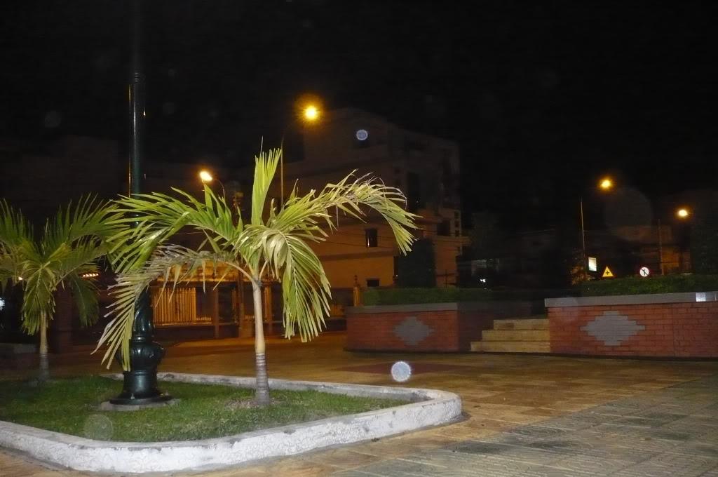 Thị xã Tân An của chúng ta. P1010772