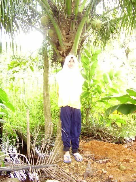 அழகான நெல் வயல்கள்2 Kenangan21Nov2005036