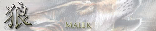 what do you think of my banner/pics Wolfmalek
