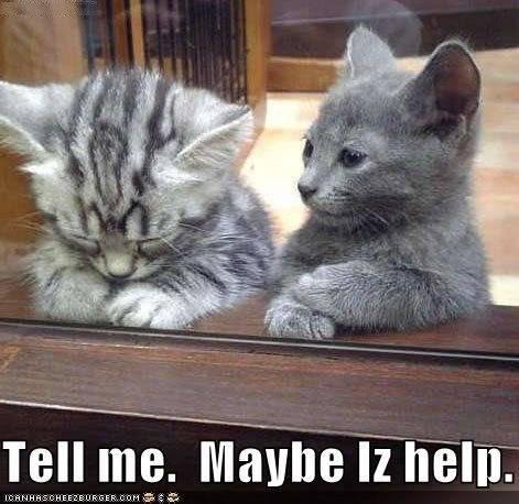 LOL Cats Lol