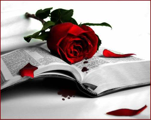 Poemas X1pnwjjkhj3oylouwenpolea65nodapkl6g