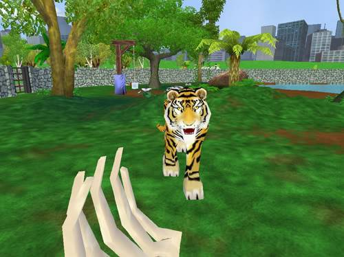 Bengališki tigrai Bengaliskastigras5
