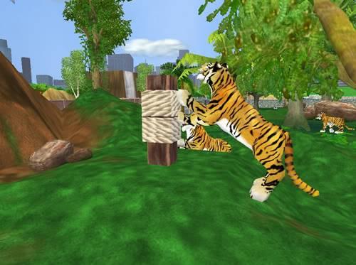Bengališki tigrai Bengaliskitigrai2