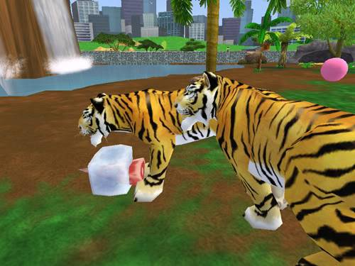Bengališki tigrai Bengaliskitigrai3