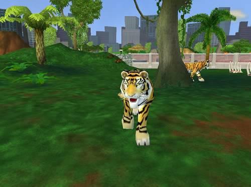Bengališki tigrai Bengaliskitigrai5