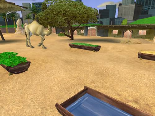 Vienakupriai kupranugariai Kupranugariai2