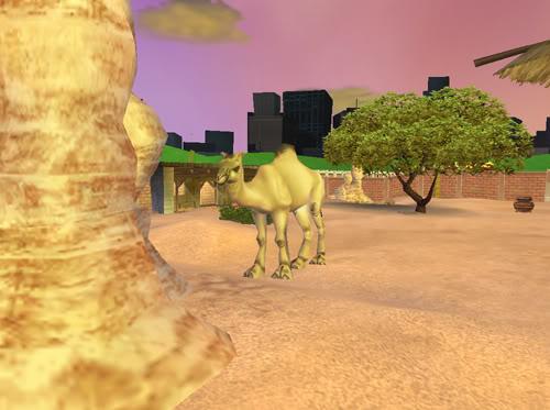 Vienakupriai kupranugariai Kupranugaris1