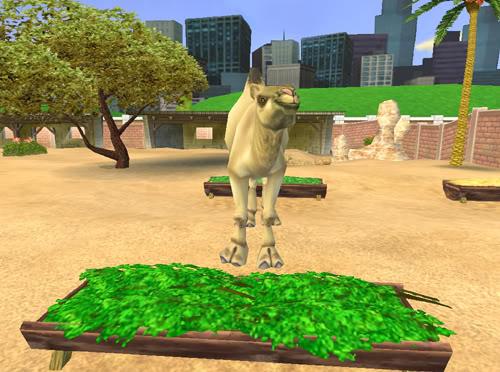 Vienakupriai kupranugariai Kupranugaris2