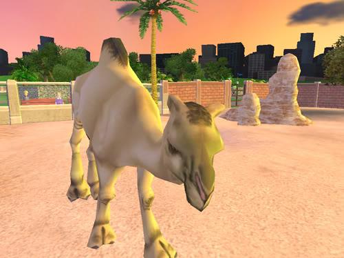 Vienakupriai kupranugariai Kupranugaris3