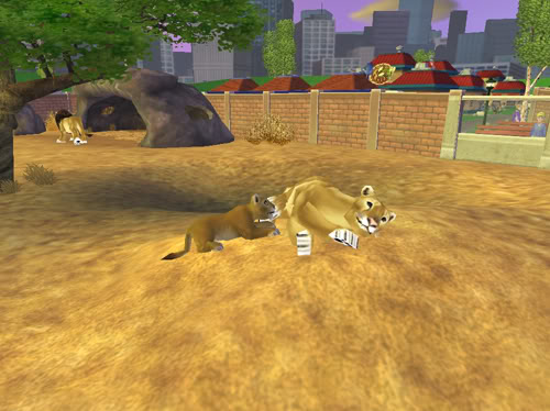 .:Liūtai:. Liutai6