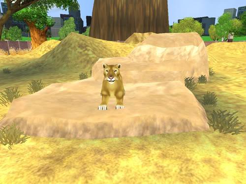 .:Liūtai:. Liutas6