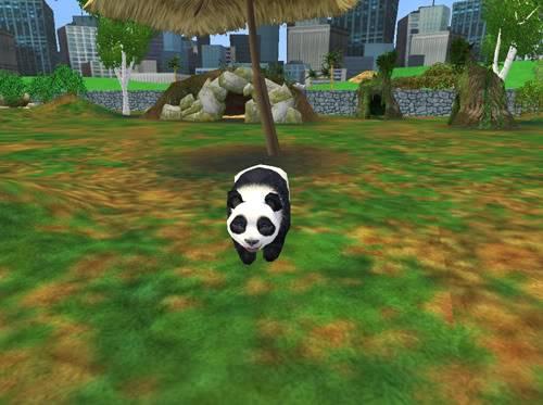 .:Pandos:. Panda1