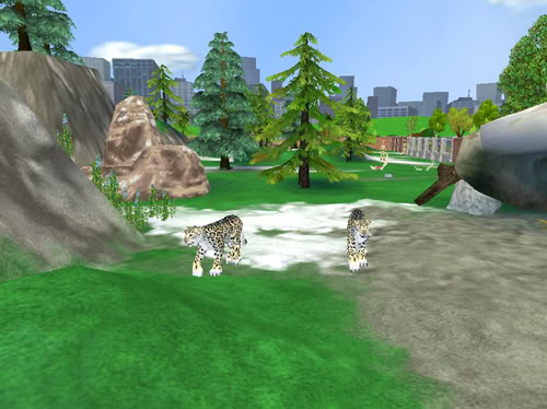 Snieginiai leopardai Snieginiaileopardai1
