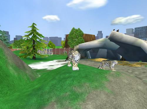 Snieginiai leopardai Snieginiaileopardai2