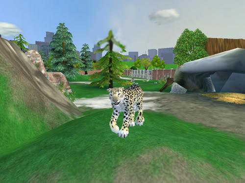 Snieginiai leopardai Snieginisleopardas3