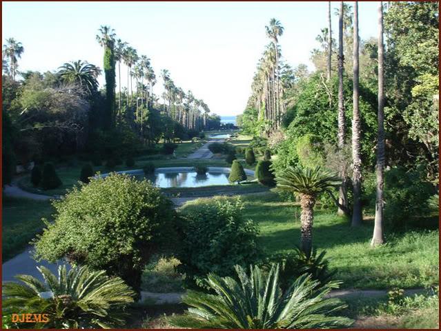 من اجمل الحدائق في الجزائر Hamma1
