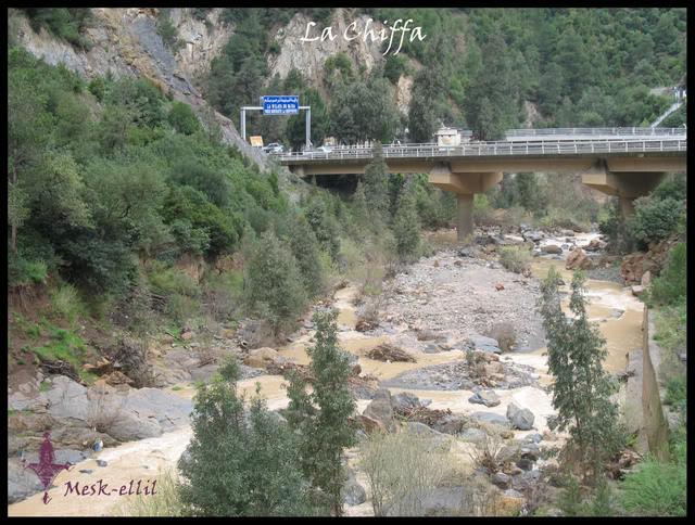 السياحة الجزائرية Lachiffabu1
