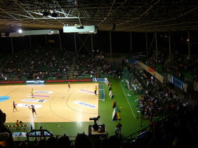 [Handball D1]- HBC Nantes - Chambéry P1020677_zps85b07e31