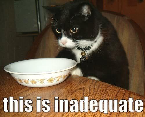 Caturday ftw Inadequate