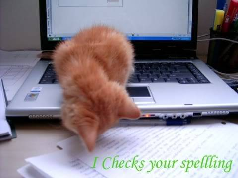 Funny Cat Pics! Spellcheck