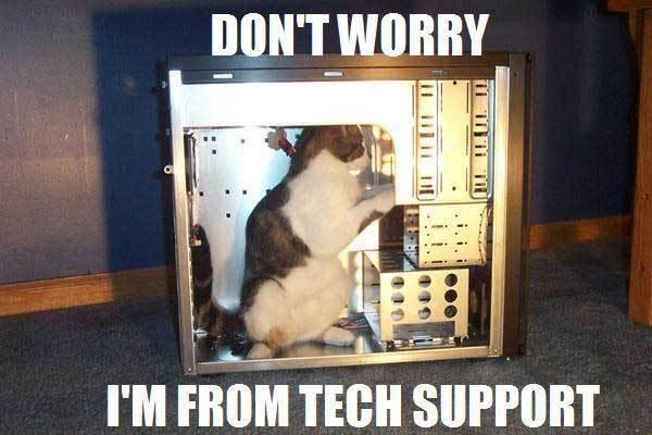 Funny Cat Pics! Techsupport