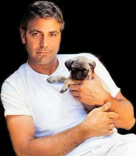 George Clooney - Page 3 George_clooney_01