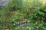 Un p'tit tour du jardin ? - Page 3 Th_file_zpsd6914db7