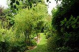 Un p'tit tour du jardin ? - Page 3 Th_file_zpseb068d63