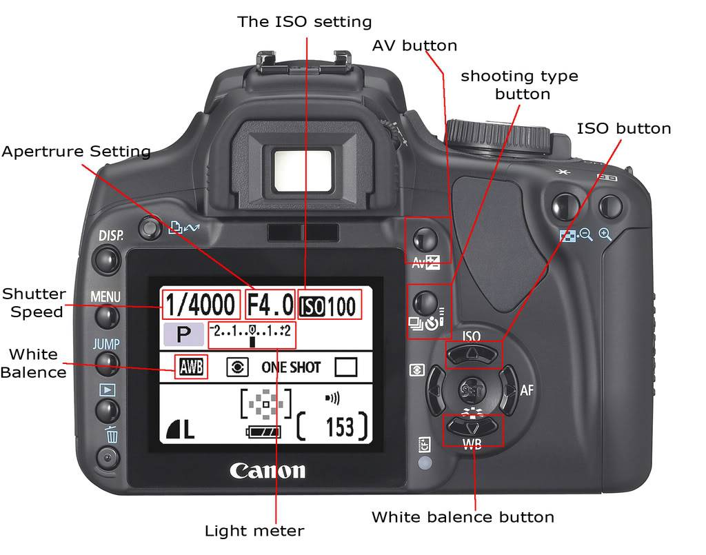 Photography Basics Buttons