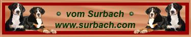 Une Aslacienne et un alsachien Logo-surbach