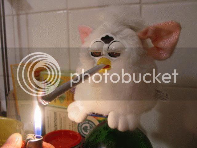 BIENVENIDO JAIME Furby