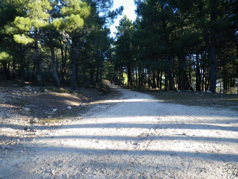 08/03/2015 - La Jarosa  y Cueva valiente- 8:00 RIMG0322_zpsmik3ssjj
