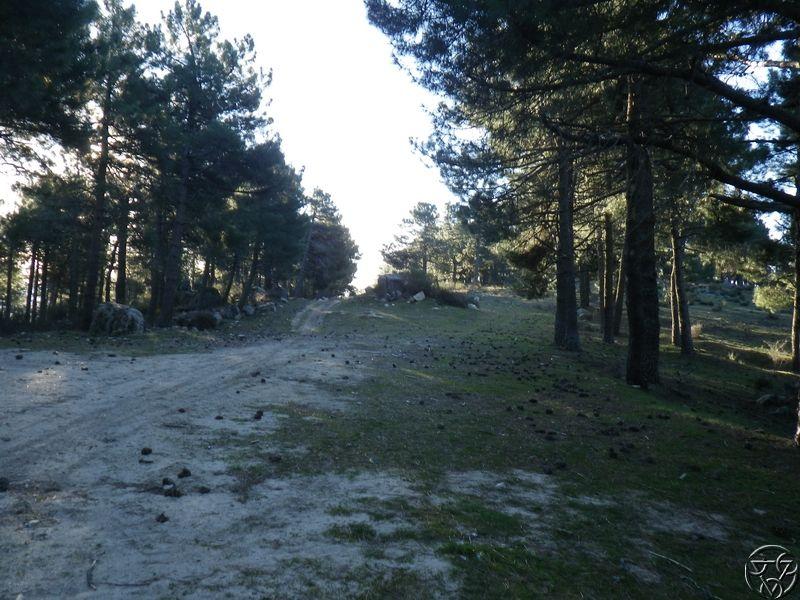 08/03/2015 - La Jarosa  y Cueva valiente- 8:00 RIMG0323_zpsm8wroqpf