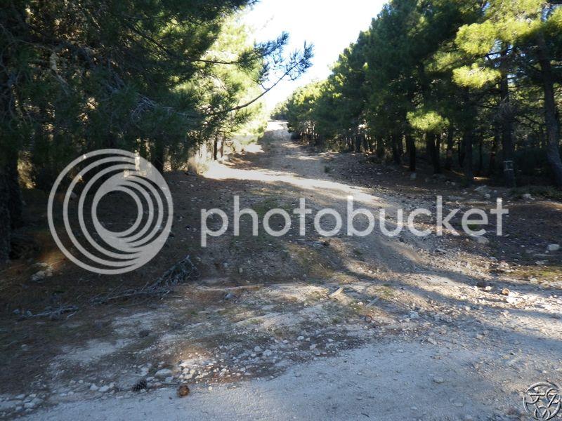 08/03/2015 - La Jarosa  y Cueva valiente- 8:00 RIMG0324_zpsg922ffde