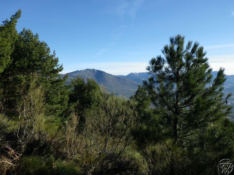 08/03/2015 - La Jarosa  y Cueva valiente- 8:00 RIMG0325_zpsin0hwngt