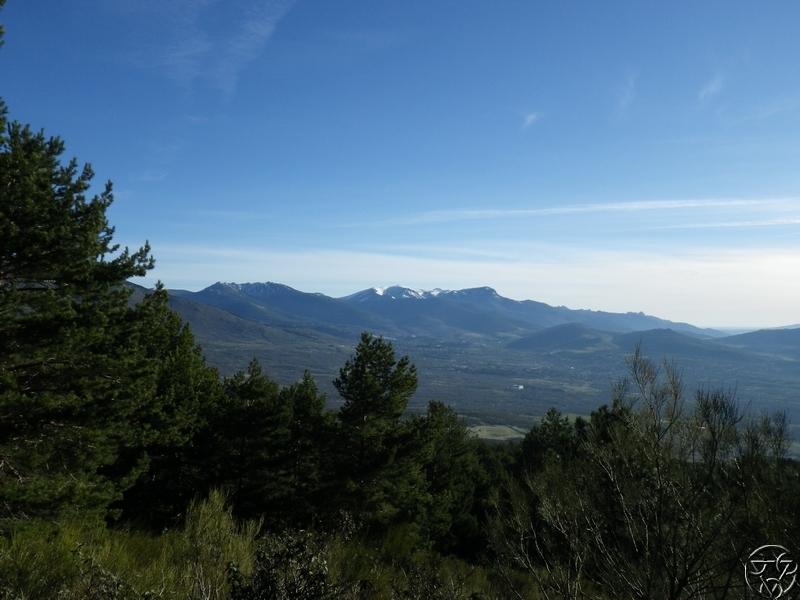 08/03/2015 - La Jarosa  y Cueva valiente- 8:00 RIMG0326_zps35b4iufm