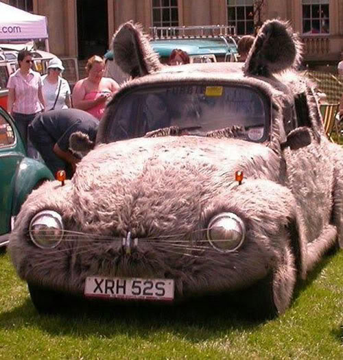 Cool and strange VW's Buncar