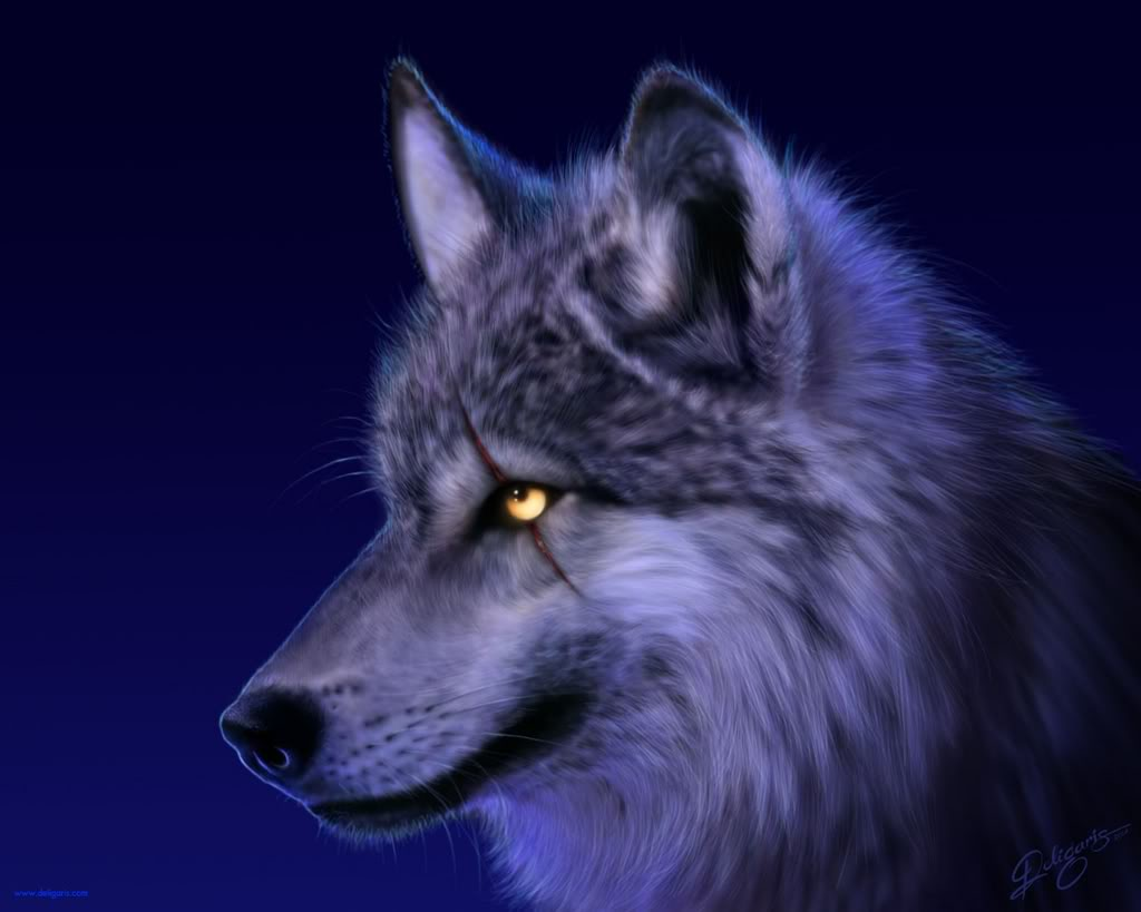 Wolves-Rule1's Characters Wolf-11