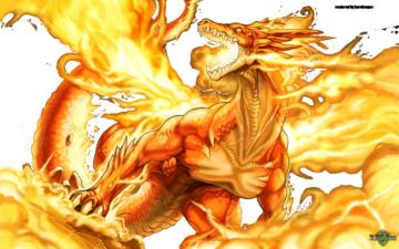 image ! - Page 2 Dragon