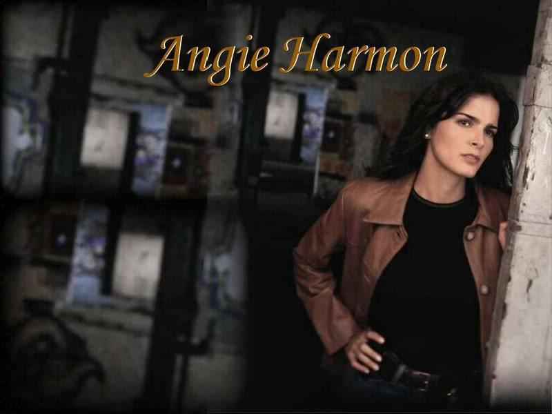 Angie Harmon 07pic016