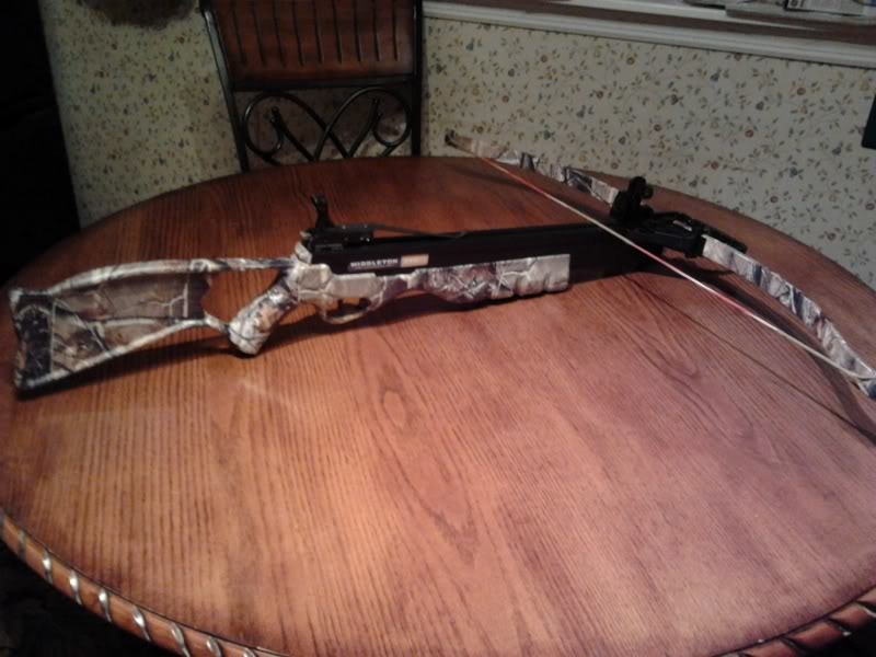 Example of modern recurve crossbow 2012-01-10_190250