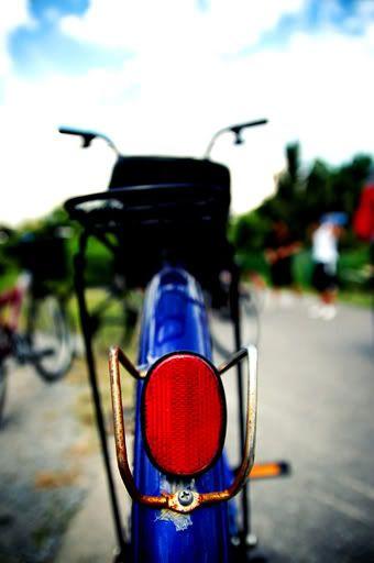 4th October 2008:  Pulau Ubin Outing Bike
