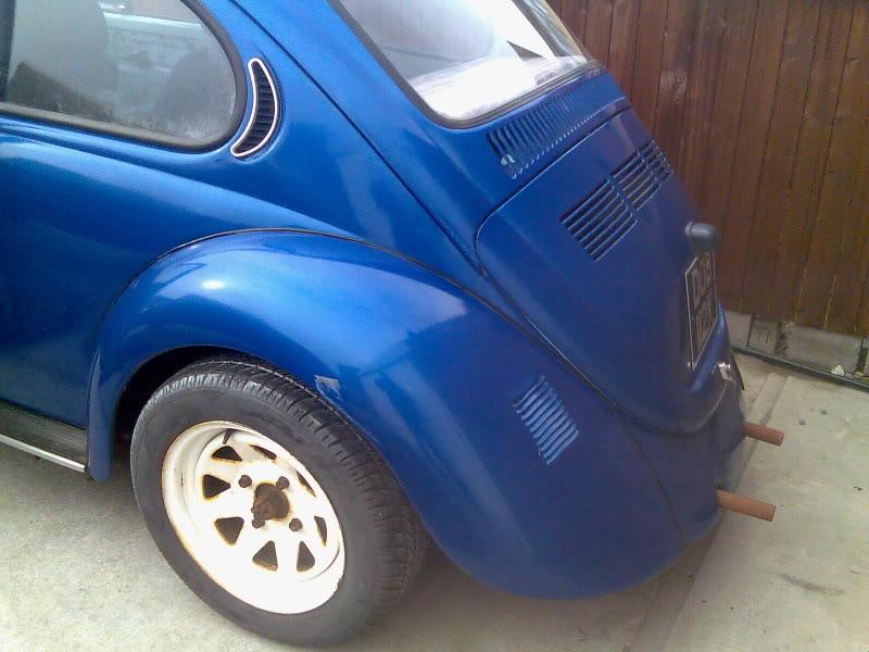 DOBBY the bug Image086